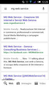 mg web service