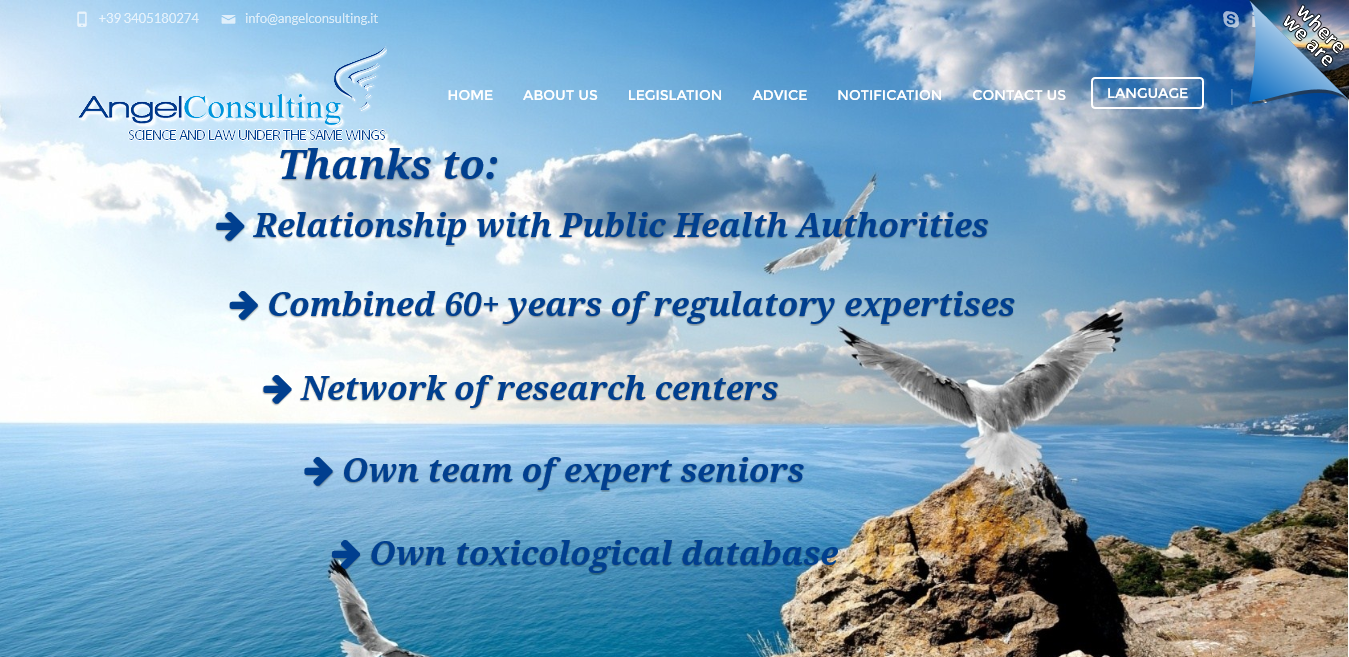 Home Page - Angel Consulting 2015-12-17 10-38-34